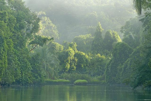 Corcavado_Park, Costa Rica